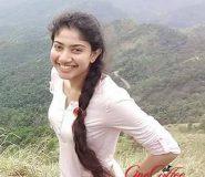 Actress Sai Pallavi Biography Wiki Bra Size Hot Photos